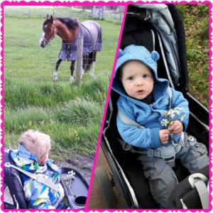 gastouder gastouderopvang BuitenGewoon kinderopvang Berkel-Enschot Tilburg Claudia Vermeulen activiteiten ontdekken leren spelen wandelen paarden buitengebied buiten gezond